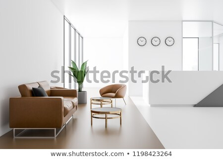 Luxury Leather Sofa. For Modern Room Reception Stock photo © robuart