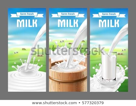 Vacas leite naturalismo produto bandeira comida Foto stock © Leo_Edition