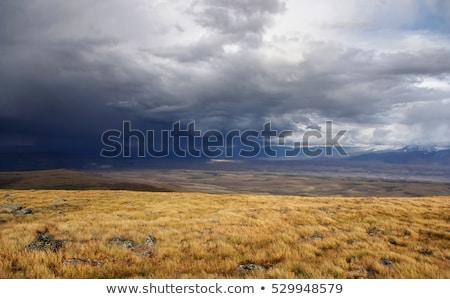 осень · прерия · трава · бурный · небе - Сток-фото © fogen