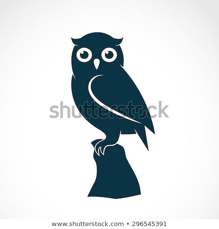 Coruja ícone branco preto um linha Foto stock © Olena