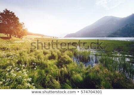 Groot alpine meer plaats mist Stockfoto © Leonidtit