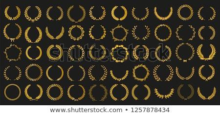 gouden · schild · laurier · krans · ontwerp · metaal - stockfoto © winner