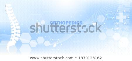 Orvosi központ egészségügy vektor gyógyszer illusztráció Stock fotó © Leo_Edition