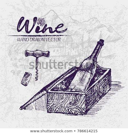 Stok fotoğraf: Digital Color Vector Detailed Line Art Wine