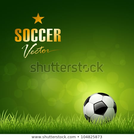 Football Championship Soccer Background With Wave Stock fotó © Sarunyu_foto