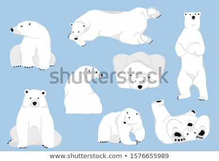Cute polar bear vector character illustration. Stock photo © sgursozlu