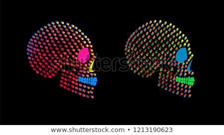 Gün ölü kafatası neon Meksika tanıtım Stok fotoğraf © Anna_leni