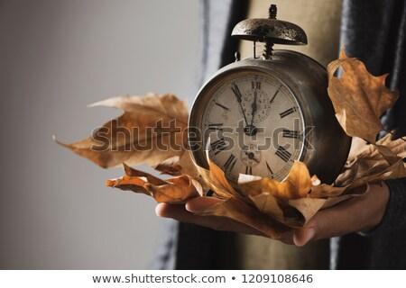 Uomo vecchio sveglia asciugare foglie primo piano Foto d'archivio © nito