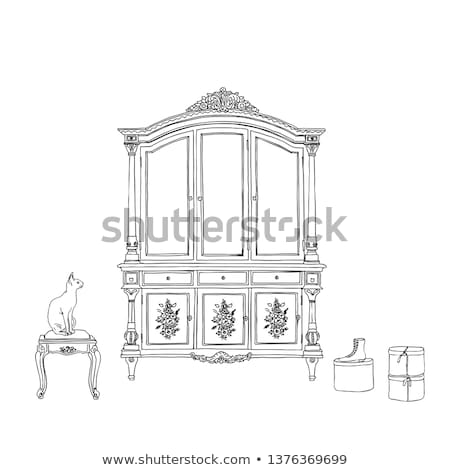 Vintage wardrobe with patterned ornament isolated on white background. Vector illustration. Stock photo © Lady-Luck