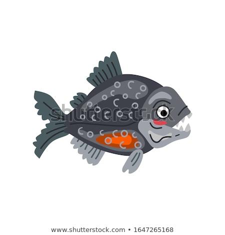 Stock fotó: Mosolyog · kicsi · piranha · rajz · illusztráció · hal
