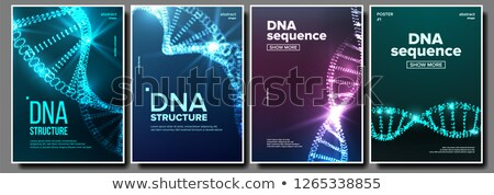 Dna poster set vettore genetica abstract Foto d'archivio © pikepicture