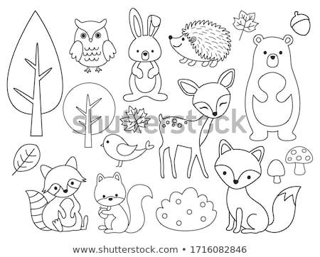 Сток-фото: животного · белку · иллюстрация · фон · белый