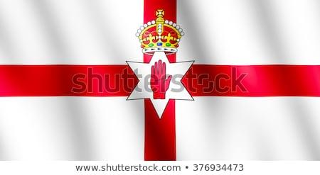 Kettő integet zászlók északi Írország izolált Stock fotó © MikhailMishchenko