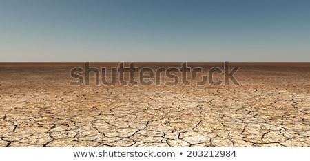 Detaliu crapat pământ crăpa sol incalzirea globala Imagine de stoc © galitskaya