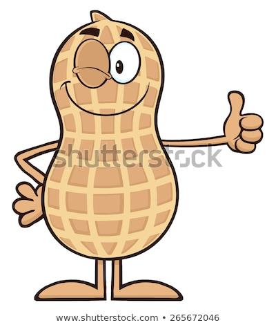 Vicces kacsintás földimogyoró rajzfilm kabala karakter hüvelykujj Stock fotó © hittoon