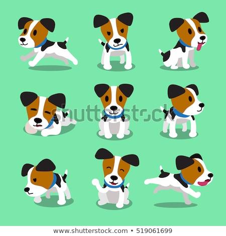 spotted dog or puppy cartoon character Stock photo © izakowski