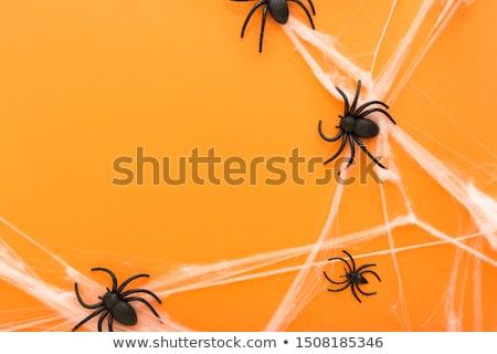 Stock photo: Happy Halloween Frame