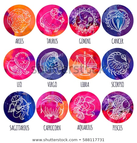 Colorful Cartoon of Gemini Zodiac Sign Stock photo © cidepix