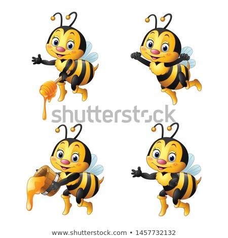 honingbij · insect · karakter · cartoon · illustratie · grappig - stockfoto © izakowski