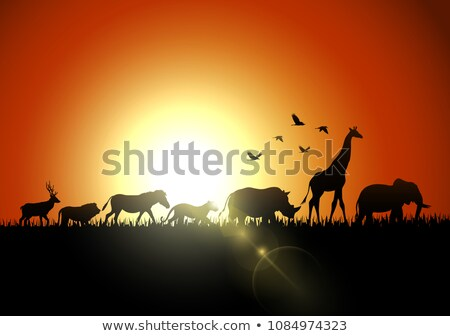 illustraion of animals in sunset in africa Stock photo © experimental
