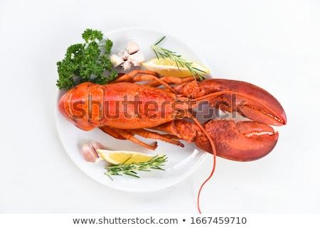 Langosta plato frescos mariscos blanco fiesta Foto stock © stevemc