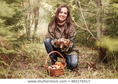 Nő gyűlés gombák kosár fű fa Stock fotó © photography33