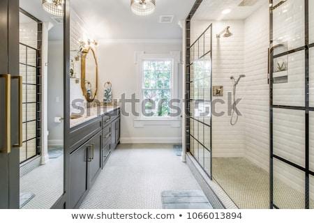 роскошный ванную Windows дома древесины Сток-фото © epstock
