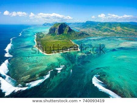 Mauritius Stock photo © tshooter