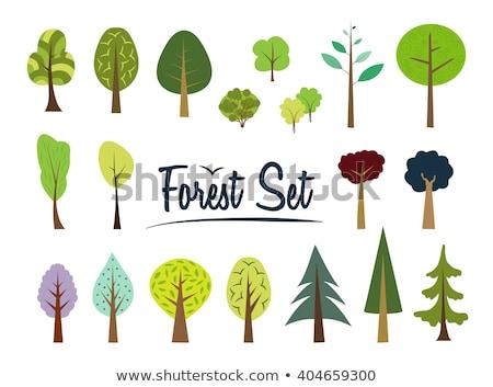 Desenho animado enfeitar vetor ilustração verde Foto stock © perysty