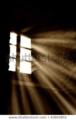 Light is coming through the barred window Stock photo © carenas1