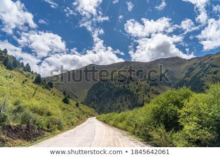Járművek rossz út Himalája LA passz Stock fotó © dmitry_rukhlenko