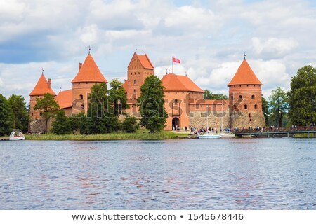 Dak kasteel oude groot huis hemel Stockfoto © timbrk