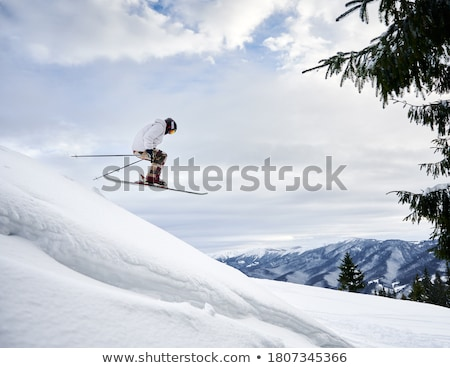 speed flying in snowy mountains stock photo © bsani