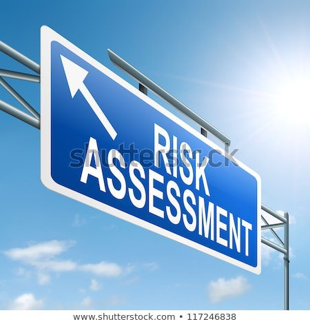 Business Concept. Risk Management Roadsign. Stock photo © tashatuvango