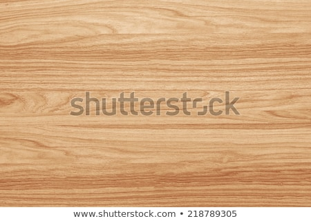 Oak wood texture Stock photo © stevanovicigor