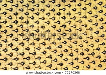 Foto stock: Peixe · escala · igreja · parede · flor · textura