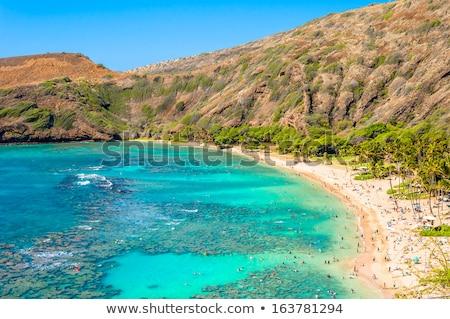 Hawaii uitgestorven vulkanisch krater nu populair Stockfoto © kraskoff