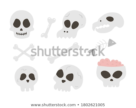 死んだ 動物 骨 食品 ストックフォト © compuinfoto