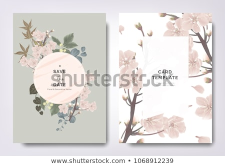 abstract · patroon · illustratie · vector · bloem - stockfoto © valeriyirkitov