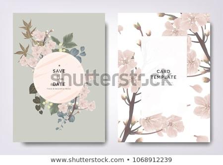 日本語 桜 桜 春 抽象的な ストックフォト © ValeriyIrkitov