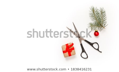 hair and scissors on a white background stock photo © m_pavlov