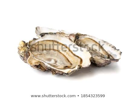 Gurmé friss francia osztriga izolált fehér Stock fotó © Klinker