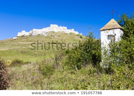 spissky castle and gods torture at front slovakia stock photo © phbcz