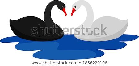 иллюстрация пару белый вектора акварель свадьба Сток-фото © artibelka