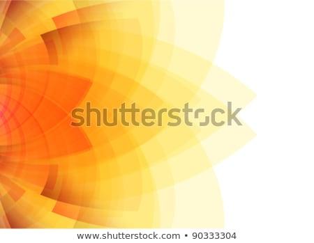 Streszczenie świetle ciepły kolory budowy projektu Zdjęcia stock © aliaksandra