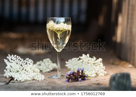 Elder juice Stock photo © andreasberheide