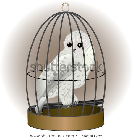 Búho jaula forestales aves interior libertad Foto stock © inxti