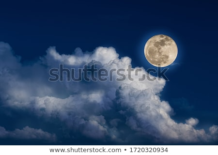 night landscape with moon Stock photo © Mikko