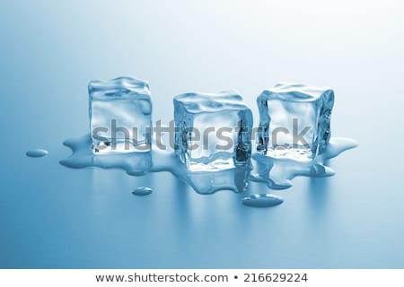 Three melting ice cubes Stock photo © karandaev