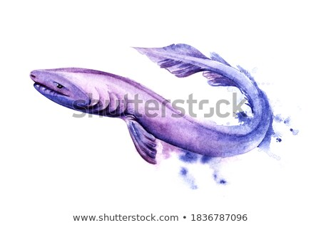 Fosil of fish with long body Stock photo © AlessandroZocc